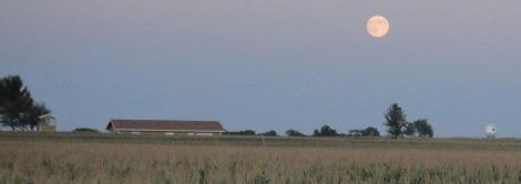 August Full Moon over Iowa Corn Fields