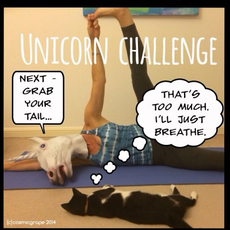 anantasana unicorn challenge cosmic grape 2014
