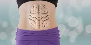 stomach with brain